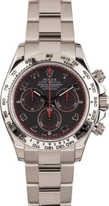PreOwned Rolex Daytona 116509 White Gold Oyster 40MM
