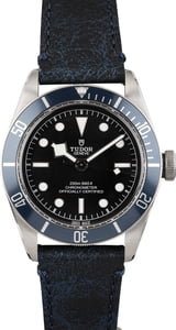 Tudor Black Bay M79230B