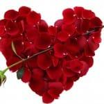 valentine day gifts