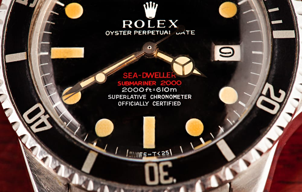 double red sea-dweller