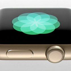 Apple Watch - Bob's Watches