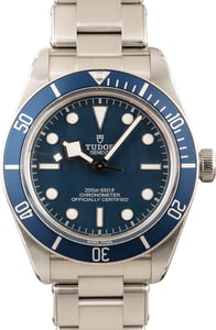 Tudor Heritage Black Bay 79030B Blue