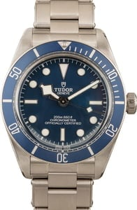 Mens Tudor Heritage Black Bay 79030