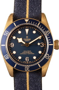 Tudor Heritage Black Bay 79250